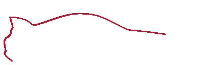 FDT Sportscars B.V. – Quality Imports